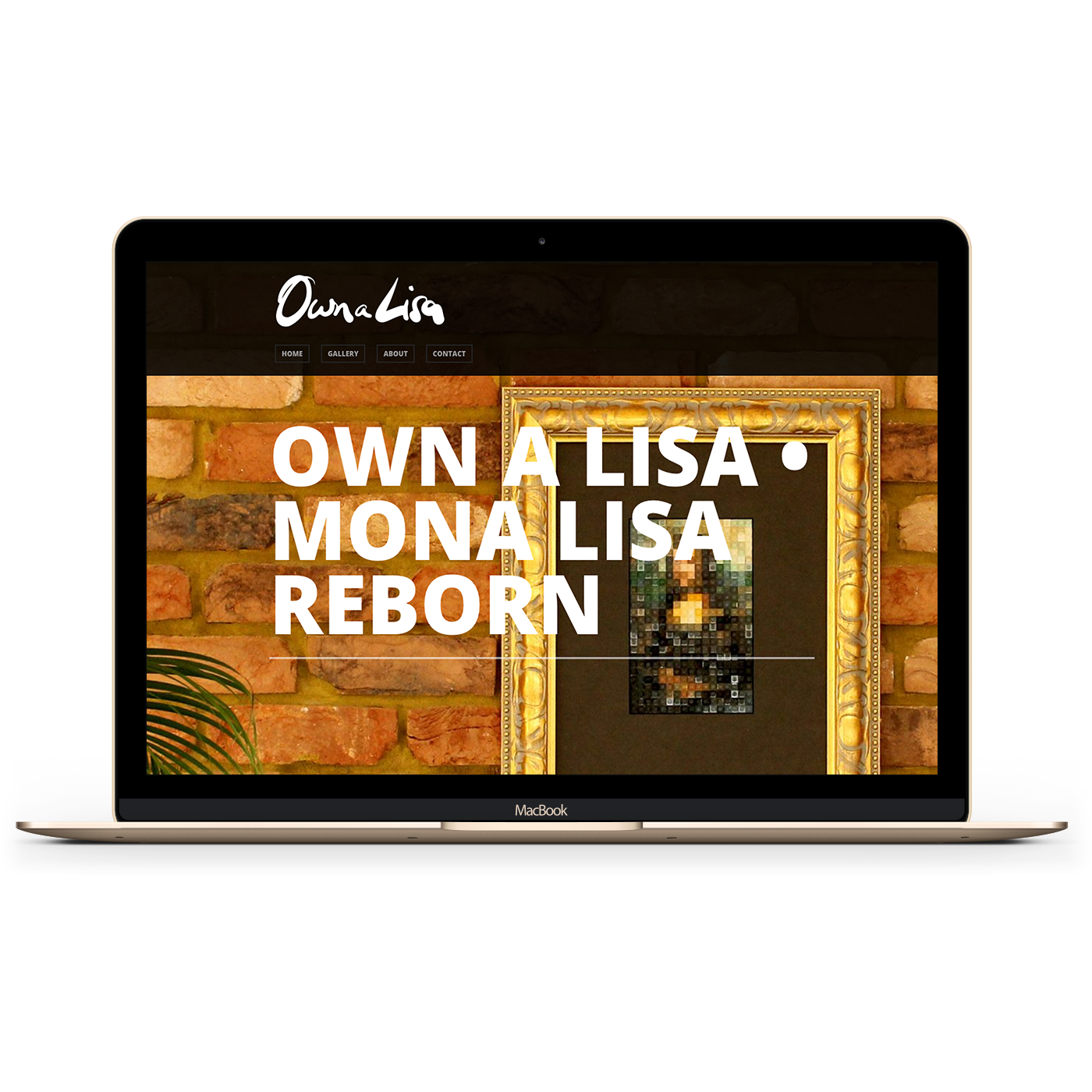 Own A Lisa Website image